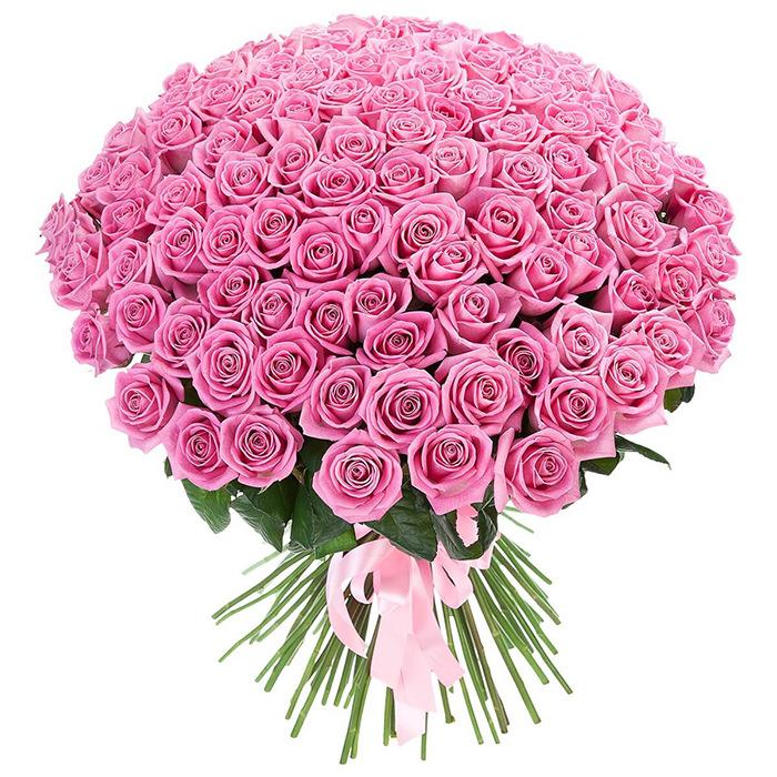Розы Россия розовые